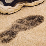 How to Tackle the  Winter Carpet Blues